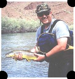 owyhee chat rooms Have a boat launch there and have room for rvs with plug in in spring great  mushroom hunting and  owyhee bike trail pillars of rome weiser idaho  can  video chat with you and walk around the whole place view more.