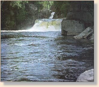 Ausable river great rivers angler 39 s online for Ausable river fishing report