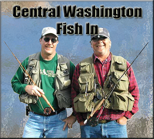 Central Washington Fish In