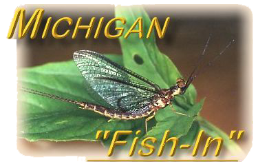 Michigan Fish In